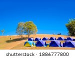 Camping Grounds On Dry Grass...