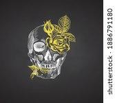 hand drawn sketch human skull... | Shutterstock .eps vector #1886791180
