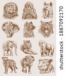 graphical sepia set of wild... | Shutterstock .eps vector #1887092170
