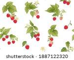 raspberry. ripe berries on...   Shutterstock .eps vector #1887122320