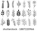 collection forest fern... | Shutterstock .eps vector #1887220966