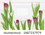 blank white photo frame with... | Shutterstock . vector #1887237979