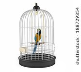 Parrot In Silver Cage Isolated.