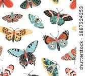 Tropical Butterflies And Moths...