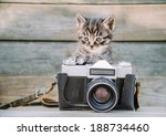 Stock photo little cute kitten with vintage photo camera on a wooden table 188734460