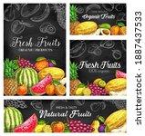 fresh fruits vector sketch... | Shutterstock .eps vector #1887437533