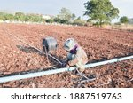Nakonsawan, Thailand - December 27, 2020:Real Thai style of farmer adjusting irrigation system in agriculture farm  background blurred of the cultivated land. - stock photo
