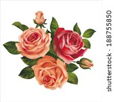 roses bouquet on white. vector... | Shutterstock .eps vector #188755850