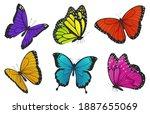 set of colorful butterflies.... | Shutterstock . vector #1887655069