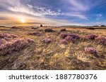 Soothing Landscape Scenery Of...