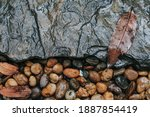 Wet River Stone Background....