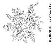 floral arrangement of blooming...   Shutterstock .eps vector #1889017153