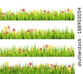 green grass and beautiful... | Shutterstock .eps vector #188903054