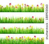 grass and flower set  isolated... | Shutterstock .eps vector #188903060