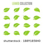 simple flat green leaf design...   Shutterstock .eps vector #1889185840