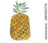 A Pineapple Color Sketch Art