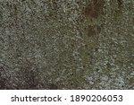 A Sheet Of Rusty Mossy Iron....
