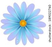 azaléia,floração,flores,botânico,coloridos,colorido,ciano,detalhes,orvalho,gotas,gotas,flora,florista,fresca,feliz