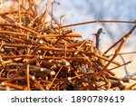 The Cut Vine Twigs Are Stacked...