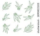 eucalyptus set. collection icon ... | Shutterstock .eps vector #1890822103