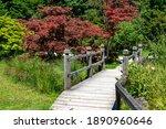 Wooden Bridge In Botanical...