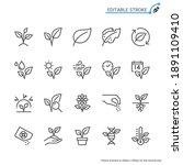 plant line icons. editable...   Shutterstock .eps vector #1891109410