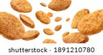 bread croutons levitate on a... | Shutterstock . vector #1891210780