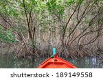 mangrove forest on summer in... | Shutterstock . vector #189149558
