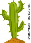 Cactus. Mexican Green Plant...