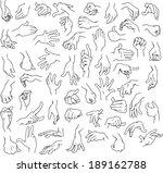 vector illustration line art... | Shutterstock .eps vector #189162788