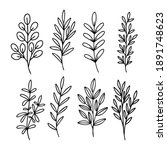 hand drawn vector set of tree... | Shutterstock .eps vector #1891748623