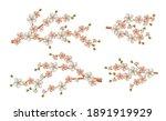 beautiful realistic sacura... | Shutterstock .eps vector #1891919929