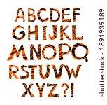 tiger alphabet  illustration...   Shutterstock . vector #1891939189