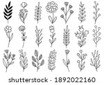 collection forest fern... | Shutterstock .eps vector #1892022160