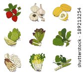 vegetable icons | Shutterstock . vector #189213254