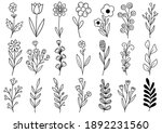 collection forest fern... | Shutterstock .eps vector #1892231560