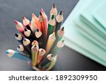 different color pencils for... | Shutterstock . vector #1892309950