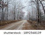 A Dirt Road Leads Through A...