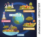 biological hierarchy... | Shutterstock .eps vector #1892627359