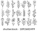collection forest fern...   Shutterstock .eps vector #1892682499