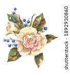 garden flowers rose with blue... | Shutterstock . vector #1892930860