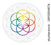 rainbow colored seed of life in ...   Shutterstock .eps vector #1893004876