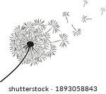 Dandelion Flower With Flying...