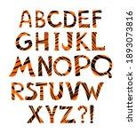 tiger alphabet  vector font...   Shutterstock .eps vector #1893073816