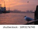 Seagull Perching On Railing...
