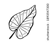 philodendron leaf stylized...   Shutterstock .eps vector #1893547300