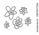 tropical flower outline. exotic ...   Shutterstock .eps vector #1893547306