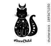 moon cat. celestial cat. cute...   Shutterstock .eps vector #1893671350