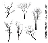 collection of trees silhouettes | Shutterstock . vector #189405209
