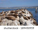 sea lions on the pier in... | Shutterstock . vector #189450959